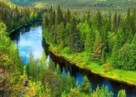 Risultato immagini per finlandia green